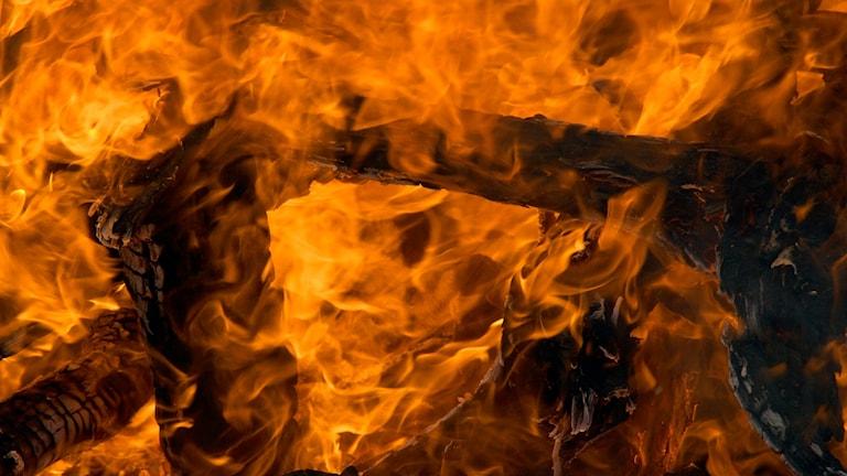 närbild på eld