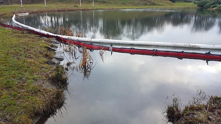 Diesel från ett utsläpp på E4an har runnit i dammen vid Östra kyrkogården i Jönköping.