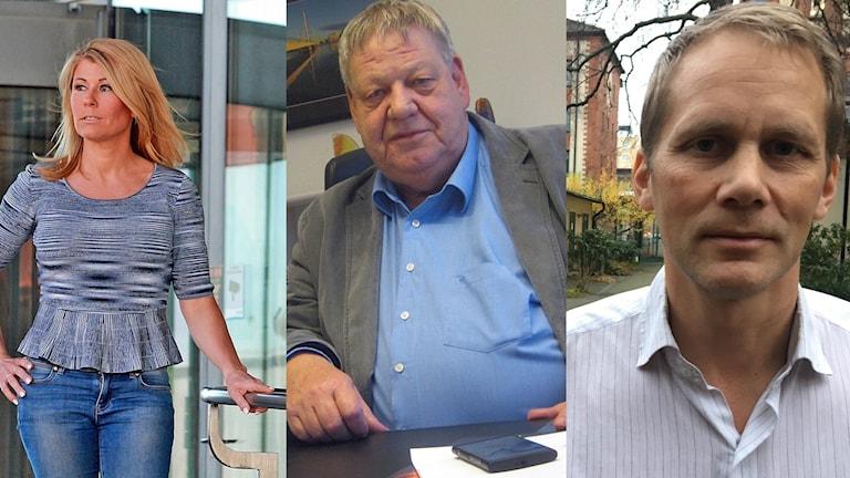 Malin Wengholm, Håkan Jansson och Samuel Godrén. Foto: