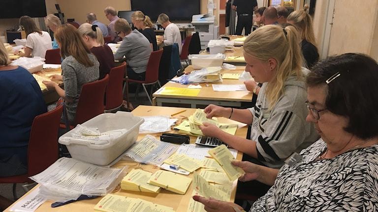 Flera personer sitter och kontrollräknar valresultatet.
