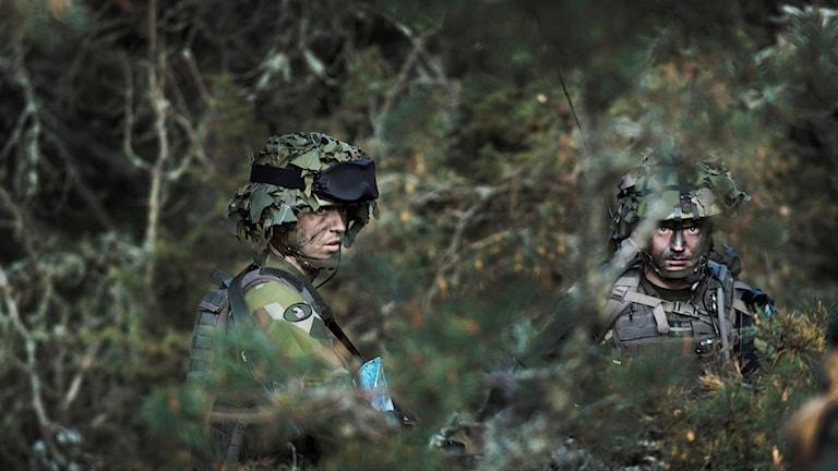Militärer i skogen.