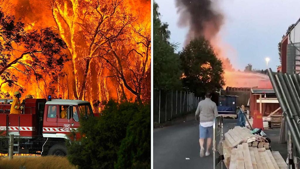 En bild på en övertänd skog bakom en brandbil och en bild på svart rök från en brand bakom ett staket.