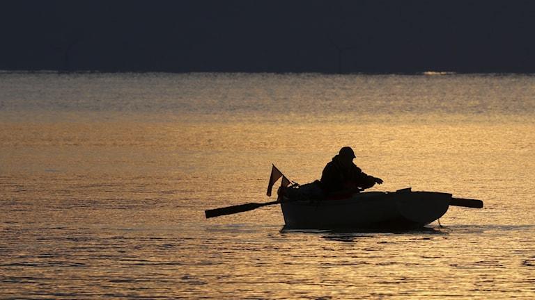 En man i en roddbåt ute på vattnet i mjukt solljus.