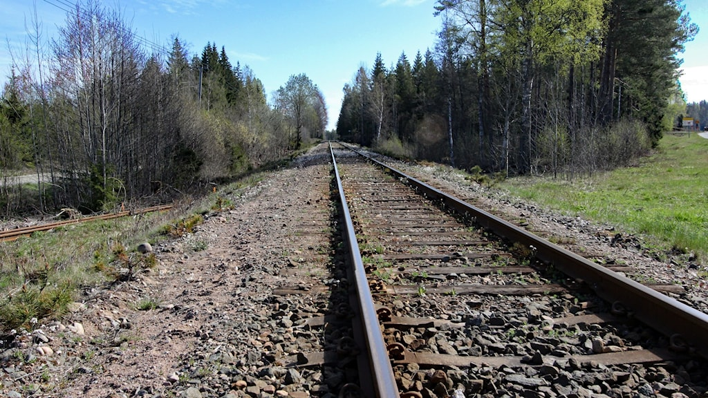 Ett helt tomt järnvägsspår på Höglandsbanan försvinner bort i fjärran mot Oskarshamn.
