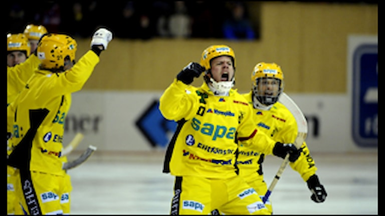 Vetlanda BK jublar efter mål (foto: Pontus Lundahl/Scanpix)