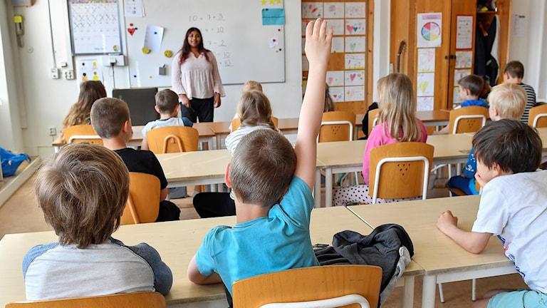 En lärare står framför en klass. Ett barn räcker upp handen.