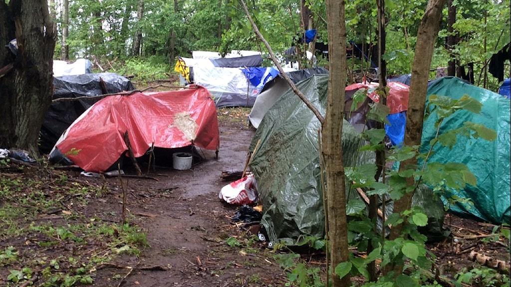 Tältlägret där EU-migranterna bott