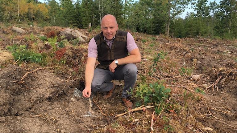En man sitter på marken i sin skog vid en död granplanta.