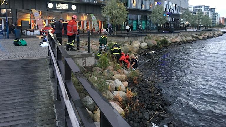 Kropp hittad livlös i Munksjön