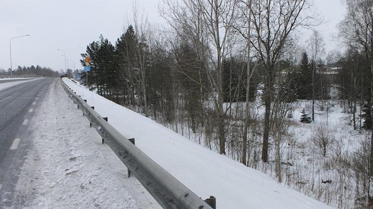 Ett snöigt skogsparti intill en 70-väg