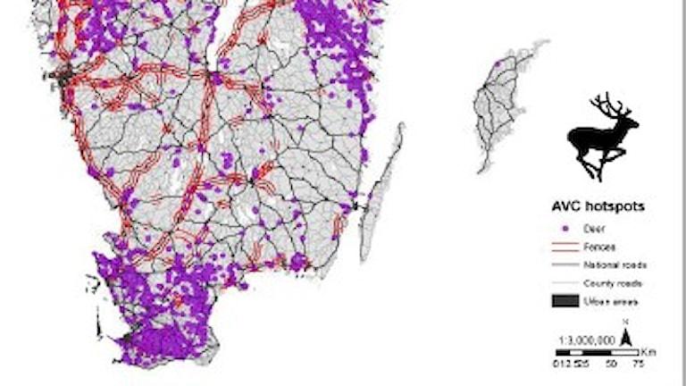En karta med massa lila prickar på.
