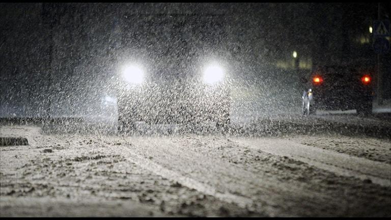 Snöfall (foto: Johan Nilsson / Scanpix)