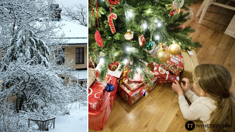 En montagebild på en vintrig trädgård och en flicka framför en julgran.