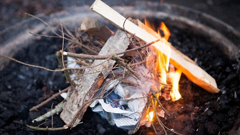 Närbild på en eld med ved som brinner.