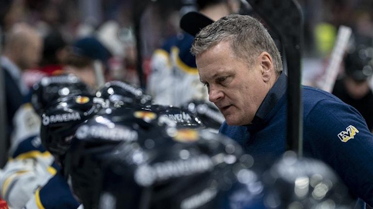 HV71 tränare Stephan Lundh i båset.