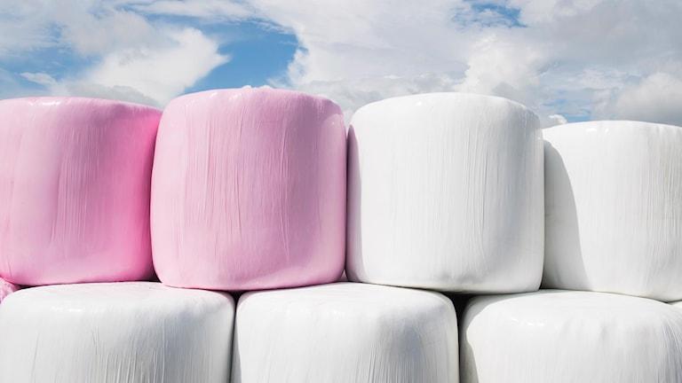 Vita och rosa ensilagebalar staplade på varandra. Blå himmel i bakgrunden.