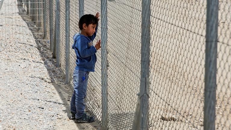 Flyktingpojke på Lesbos.