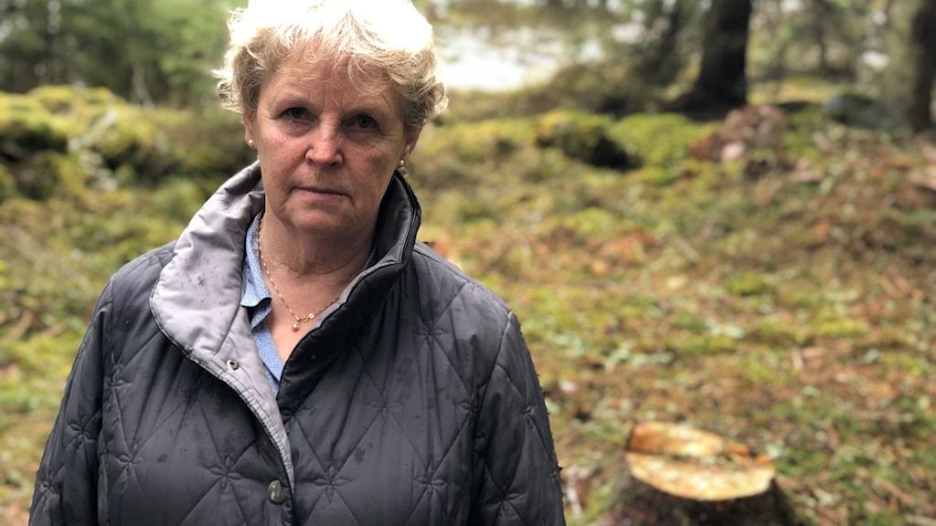 Elisabeth Franzén står bredvid en stubbe i skogen.
