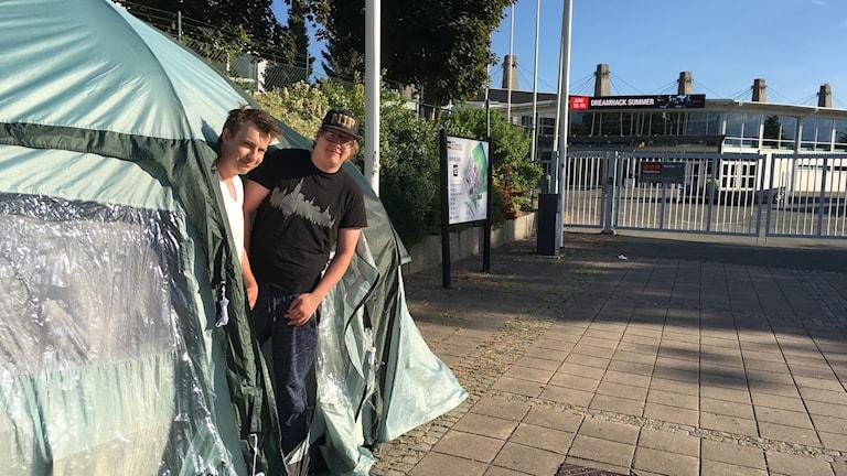 Två killar tittar ut genom tältöppning framför grinden in till Elmia.
