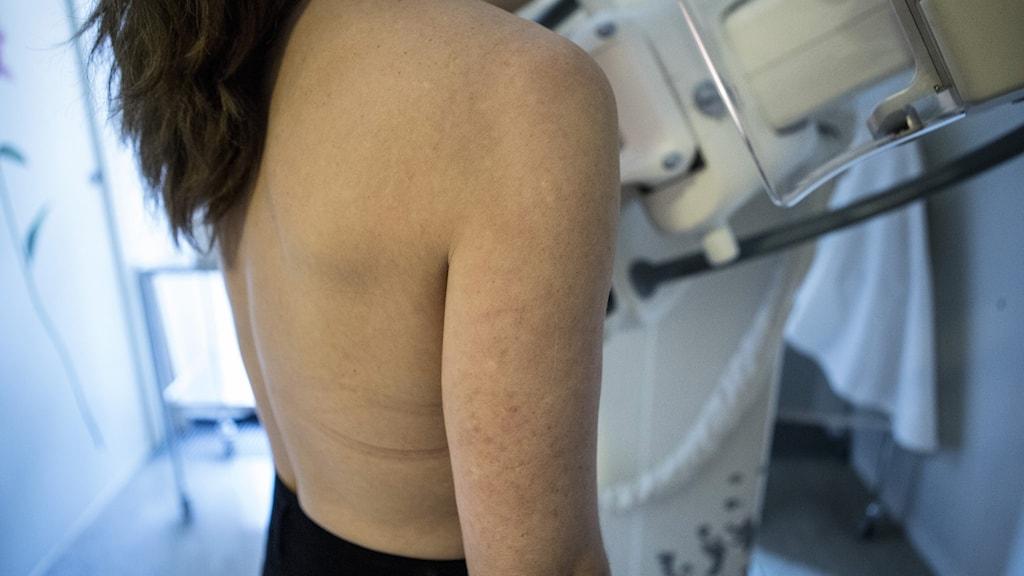 En kvinna genomgår en mammografiundersökning
