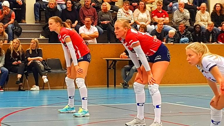 Stina Lindstam Gislaveds volleyboll