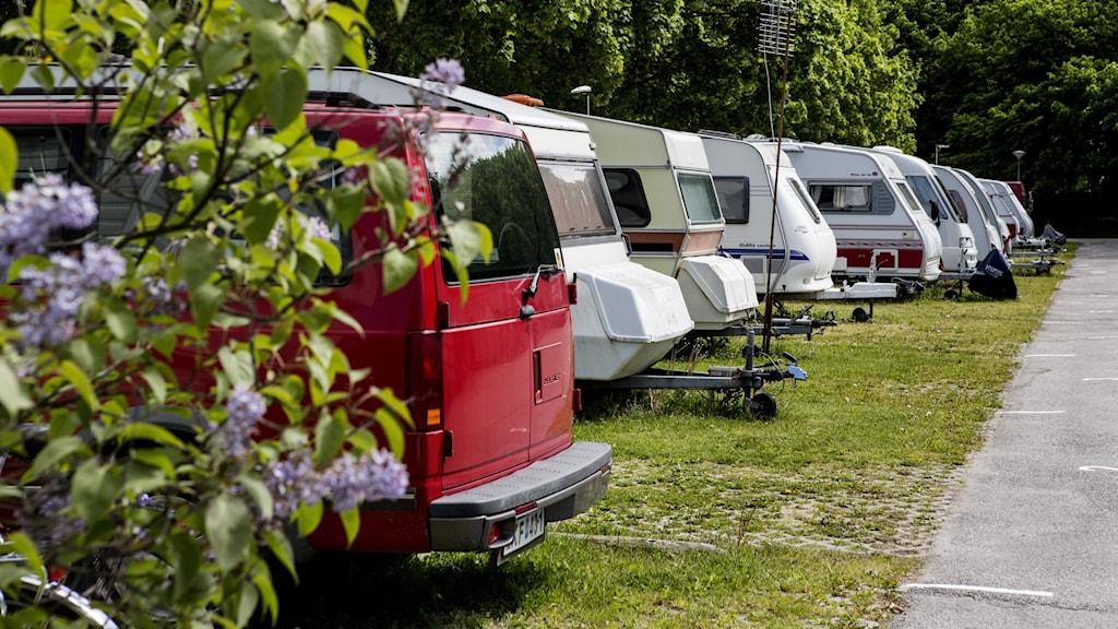 Ett tiotal husvagnar parkerade på rad på en grön gräsmatta.
