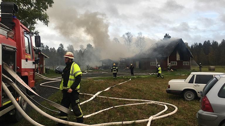 Branden i Skillingaryd ladugård djur