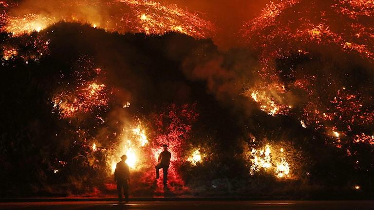 Siluetterna av två brandmän syns framför en stor brand.
