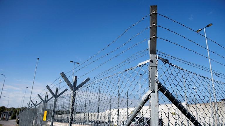 Ett staket med taggtråd runt en fängelsegård.