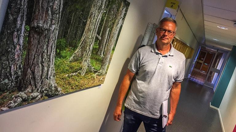 generaldirektör på skogsstyrelsen i jönköping