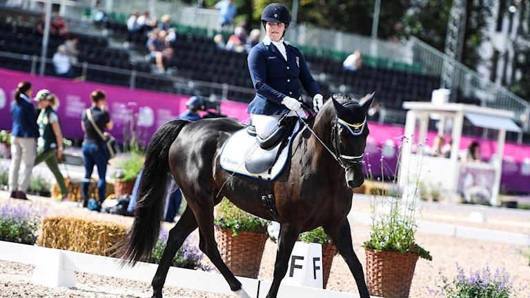 En ryttare sitter på en häst under en tävling i dressyr.