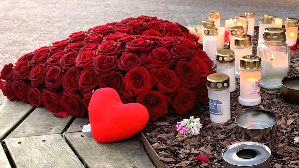 Gravljus, marschaller och rosor ligger på mark.