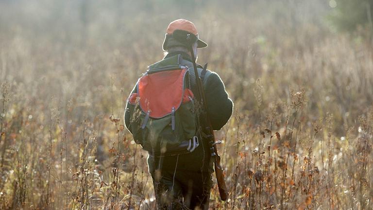 En jägare går på en äng.
