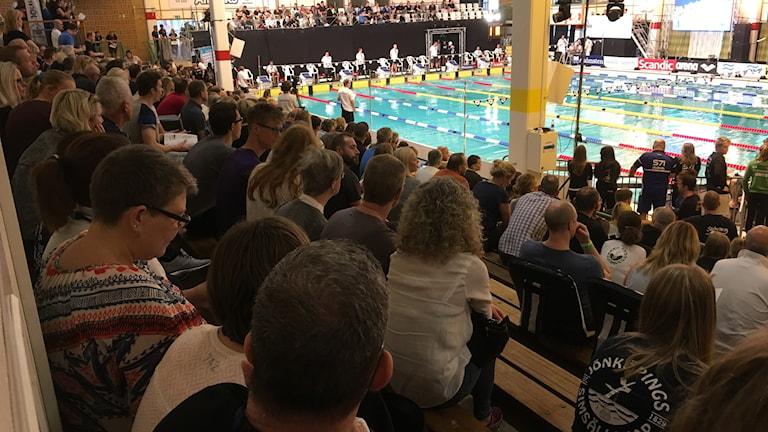 Simning SM Jönköping publik