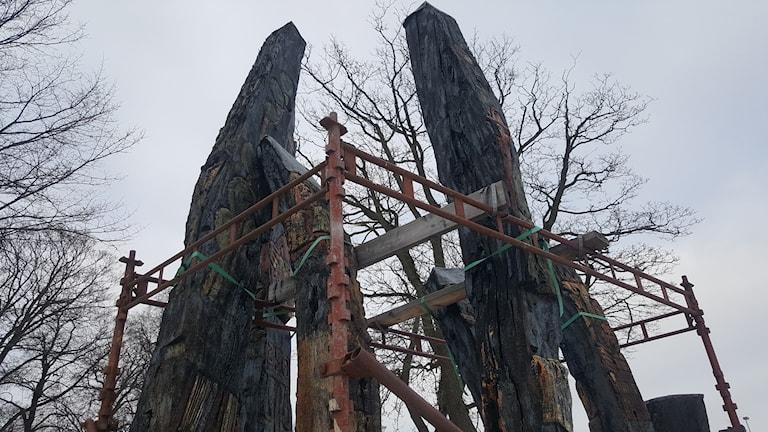 Ett antal träpålar omringade av metallställningar.