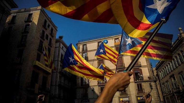 Flaggviftning för katalonsk självständighet i samband med ett tal av regionpresidenten Carles Puigdemont i Barcelona nyligen. Foto: Santi Palacios/AP photo/TT arkiv.