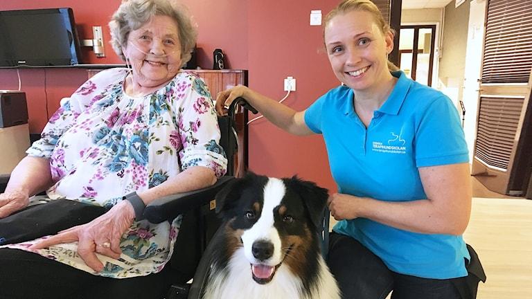 en pensionär, en hund och en hundförare