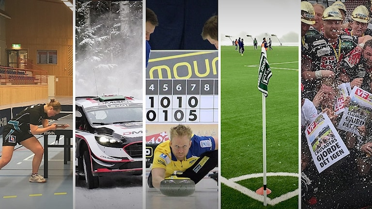 Pingis, rally, curling, fotboll och amerikansk fotboll. Foto: Sveriges Radio.