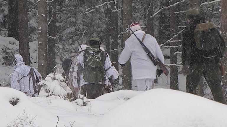 Jägare går i snön. Foto: Lennart Nordenstein/Sveriges Radio.