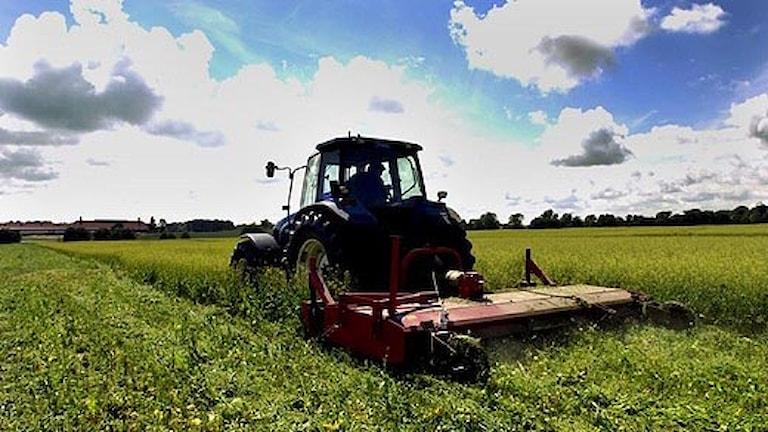 Traktor. Foto: Frida Hedberg/Scanpix