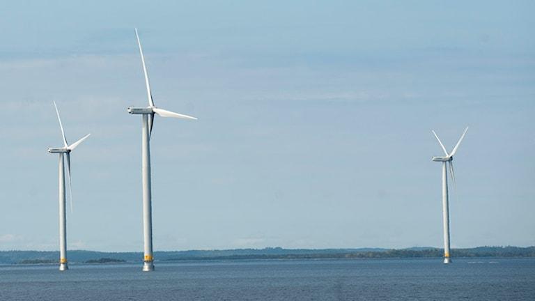 Tre vindkrafteverk i Vänern. Foto: Fredrik Sandberg/SCANPIX.