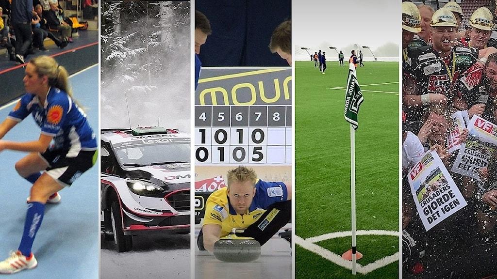 Olika sportaktiviteter kopplade till Karlstad. Foto: Sveriges Radio.