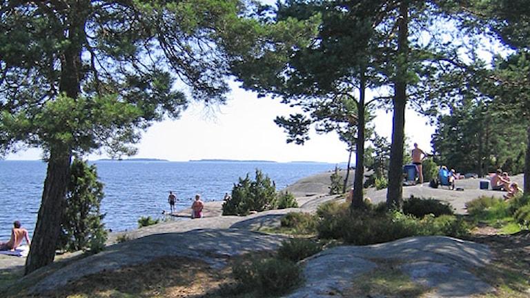 Skutberget i Karlstad. Foto: Karlstad kommun.