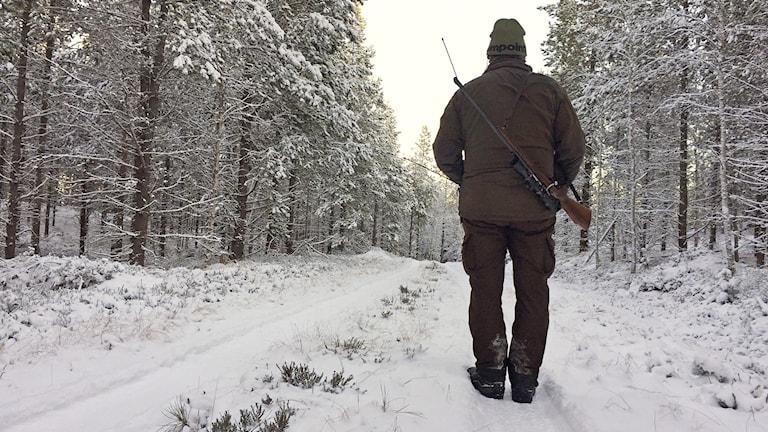 En jägare med bössa på ryggen. Foto: Sara Johansson/Sveriges Radio.