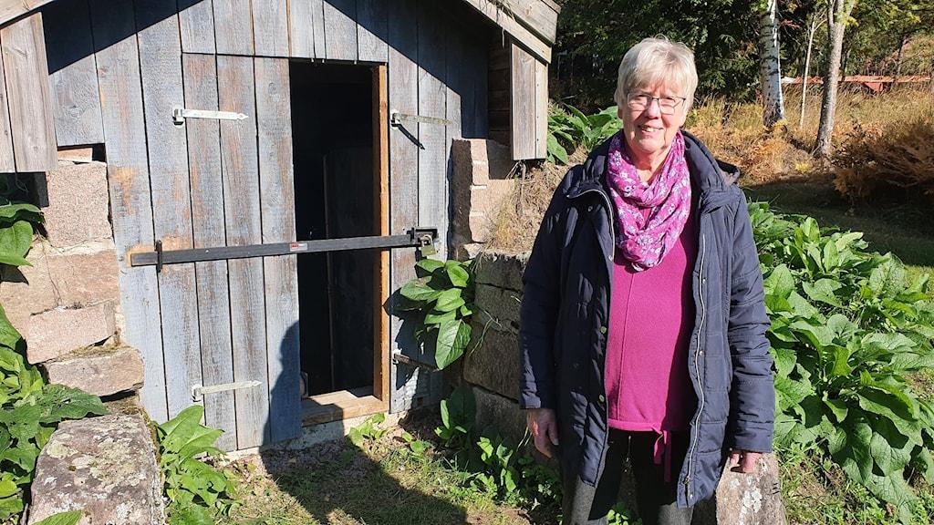 Berit Juhl, ordförande i Fryksände hembygdsförening framför den tömda jordkällaren. Foto: Aron Eriksson/Sveriges Radio.