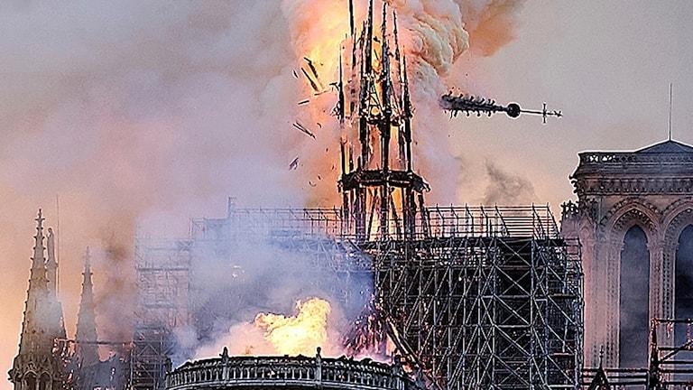 Spiran i Notre-Dame kollapsar. Foto: Diana Ayanna/AP.