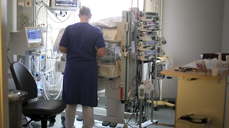 En sjuksköterska står med ryggen mot kameran, vänd mot en kuvös. Foto: Björn Larsson Rosvall/TT