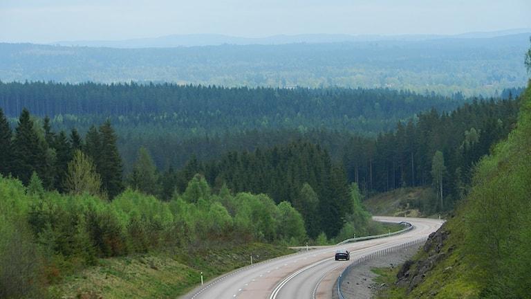 Utsiktbild från Dammshöjden. Foto: Roy Malmborg/Sveriges Radio.