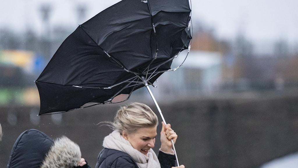 tre kvinnor går i blåst med ett trasigt paraply. Foto: Johan Nilsson/TT