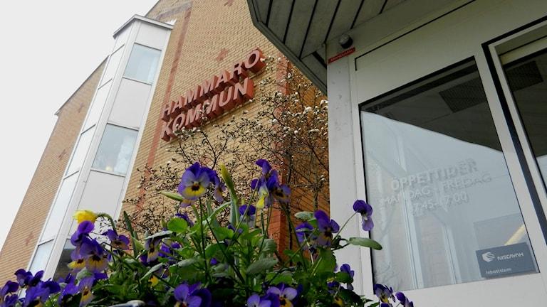 Fasaden till kommunhuset i Hammarö kommun.  Foto: Roy Malmborg